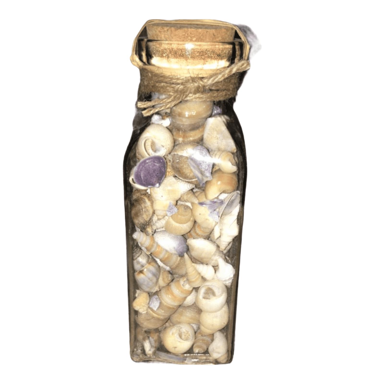 Muscheln in Glasflasche
