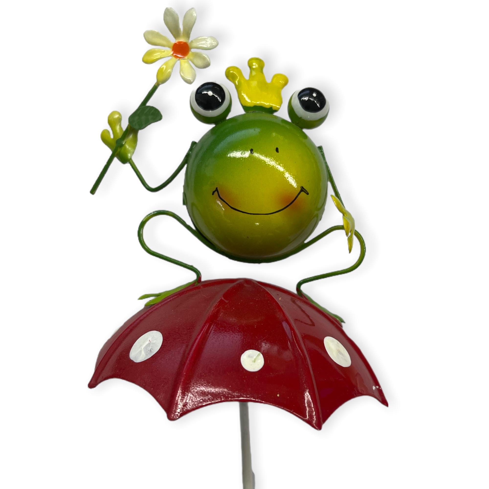 Frosch auf Schirm mit Blume