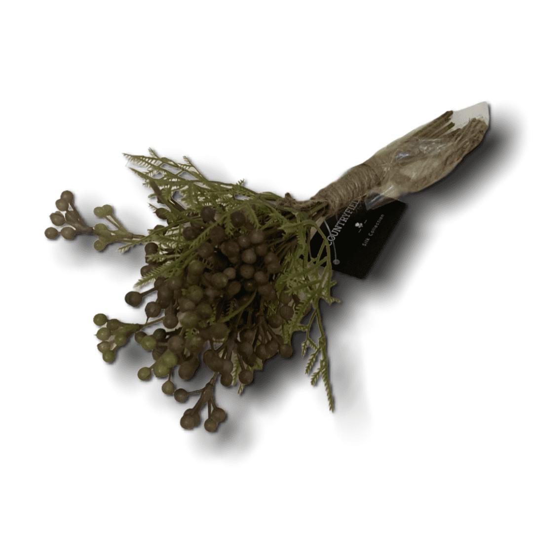 Farn mit grün-braunen Beeren