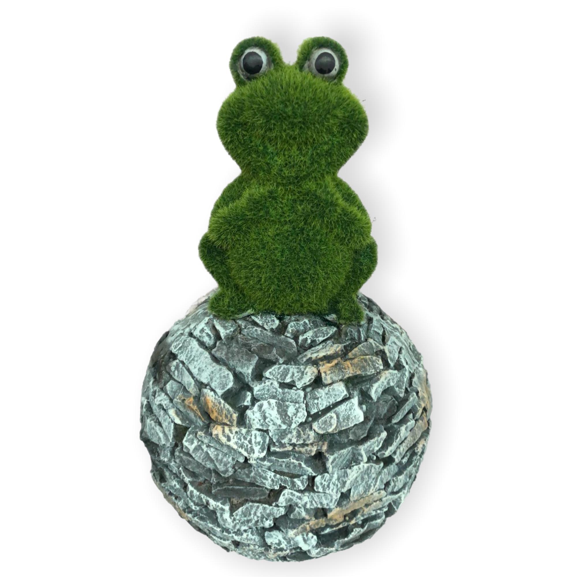 """Moos-Frosch """"Ronny"""""""