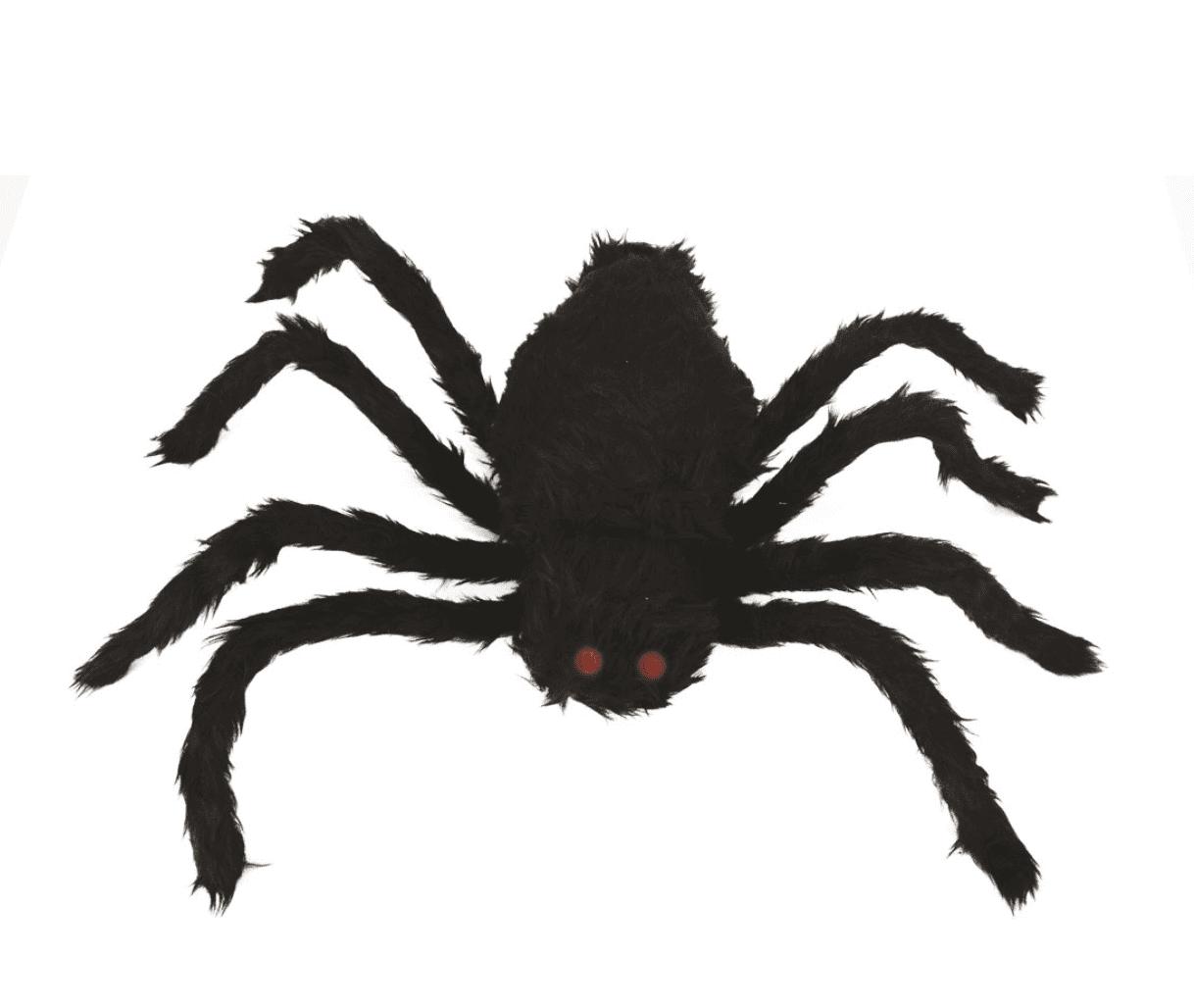 Laufende Spinne